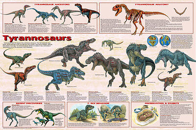 (LAMINATED) Tyrannosaurus Dinosaurs POSTER (61x91cm) Educational Wall Chart Art