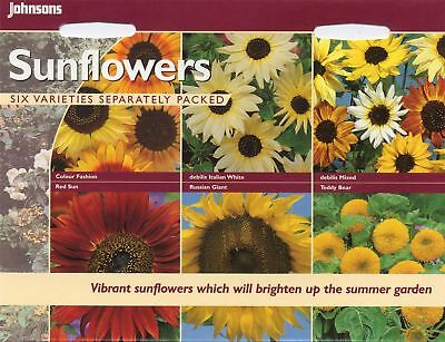 Johnsons Seeds - Pictorial Pack - Flower - Sunflowers Collection