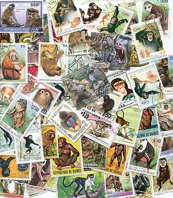 Fine Collection Of Stamps Showing Monkeys And Apes - All Different!