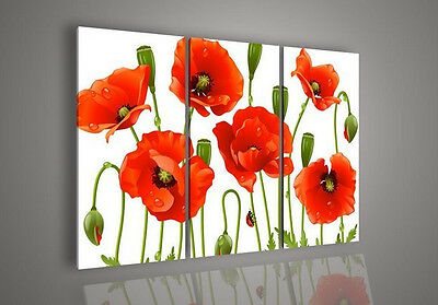 3 Pies Wall Art Modern Abstract Acrylic Flower Red Poppy Oil Painting(no framed)