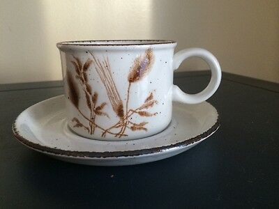 VINTAGE STONEHENGE MIDWINTER WEDGWOOD WILD OATS PATTERN CUP & SAUCER ENGLAND