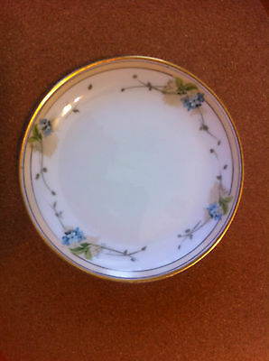 Antique JR Hutschenreuther SELB Bavaria Plate ~ Hand Painted 1857 - 1920