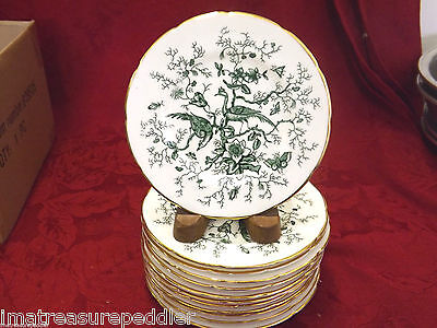 "Coalport Cairo Green 12 Bread Plates - 5 3/4"" Birds Insects Flowers Foilage Gold"