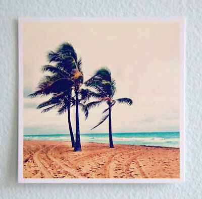 Original Fine Art Photo of Florida Beach, Palm Trees, Fort Lauderdale Square 4X4