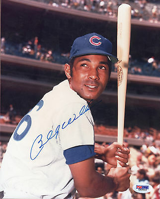 Billy Williams PSA/DNA Autographed 8x10 Photo Signed Chicago Cubs 1969 HOF P91