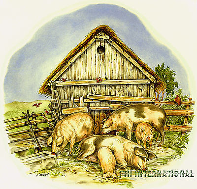 A07 ~ Pig Family Ceramic Decals, 4 sizes, 2 designs to choose from, Hogs, Farm
