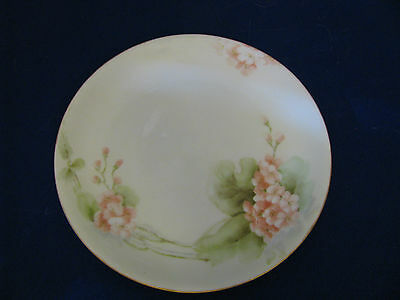 "Hutschenreuther Selb Bavaria Hand Painted Plate 8 1/4"" Floral on White"