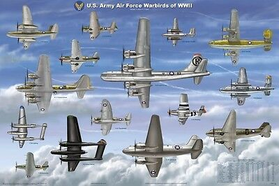 USAAF WARBIRDS OF WWII EDUCATIONAL POSTER (61x91cm) WAR PILOT PRINT PICTURE
