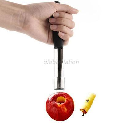 Stainless Steel Core Seed Remover Fruit Apple Pear Corer Easy Twist Kitchen Tool