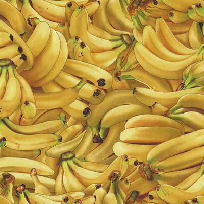 Bananas Fruit Food Cotton Quilt Fabric Fat Quarter or Metre Free Postage *New*