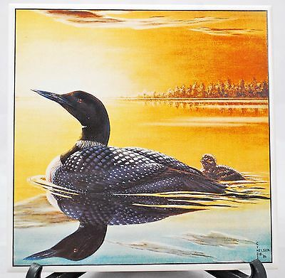 LOON & Baby Swimming at Sunset Porcelain Tile Trivet by Cyndi Nelson 1986