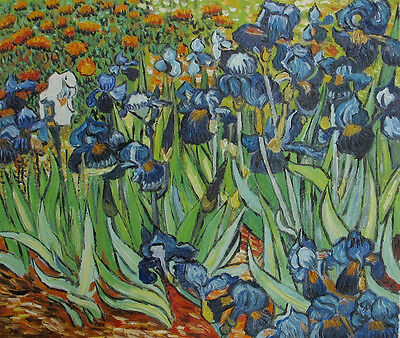 """Oil on canvas IRISES by Van Gogh oil painting reproduction hand painted 20""""x24"""""""