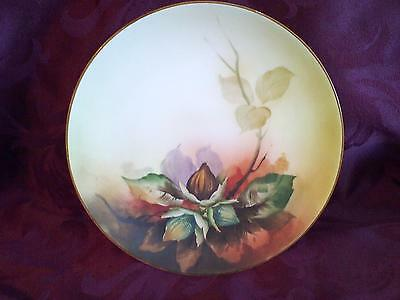 Antique Nippon Hand Painted Plate  ~  Old Noritake 1910 to 1911 (M Stamp)