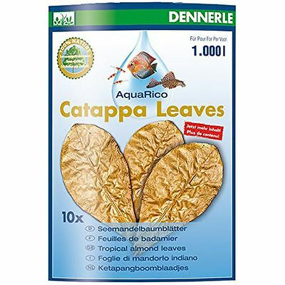 Dennerle Catappa Leaves - 10 pcs for Shrimps, Bettas, Discus