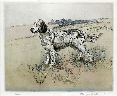 ENGLISH SETTER DOG LIMITED EDITION ENGRAVING PRINT  by the Late Henry Wilkinson