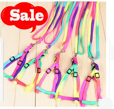 Adjustable Pet Small Dog Puppy Cat Kitten Nylon Harness Collar Leash Lead
