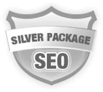 500,000  Real Visitors and SEO Submit Website Web Advertising