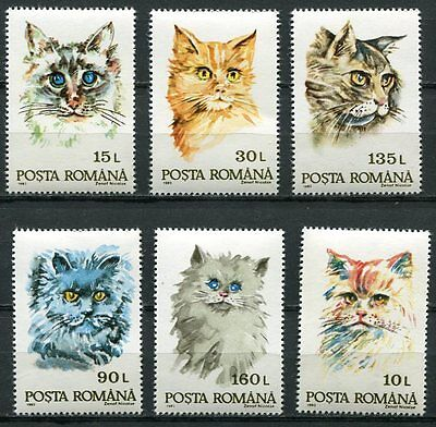 Romania 1993 Domestic Cats Mint Complete Set Of  6 Stamps!