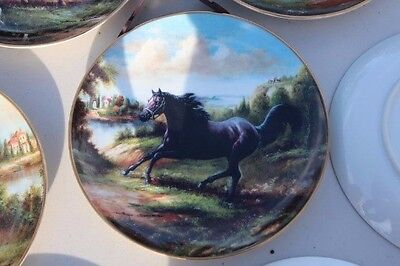 Royal Doulton Horse Collector Plate - Free as the Wind