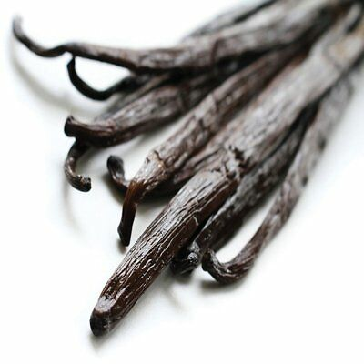 Vanilla Bean Fragrance Oil Candle/Soap Making Supplies *Free Shipping*