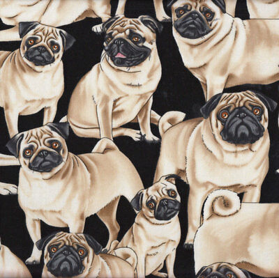 Pug Dogs on Black Pet Animal Quilt Fabric FQ or Metre *New*