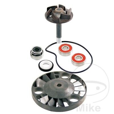 Vespa GT 200 L Granturismo 2003-2004 Water Pump Repair Kit