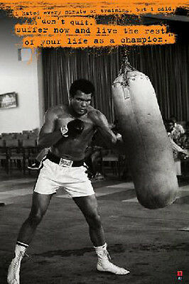 MUHAMMAD ALI BOXING BAG GYM POSTER (61x91cm)  PICTURE PRINT NEW ART