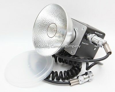 Lumedyne Signature 2400ws Head #HQBC & Head Cable Package