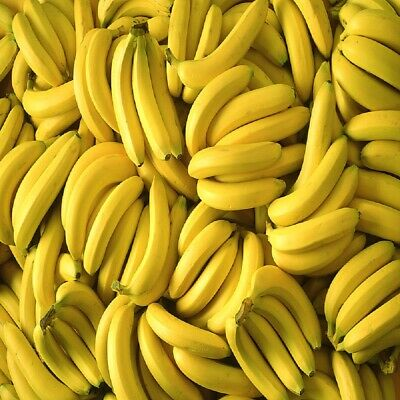 Banana Fragrance Oil Candle/Soap Making Supplies ***Free Shipping***