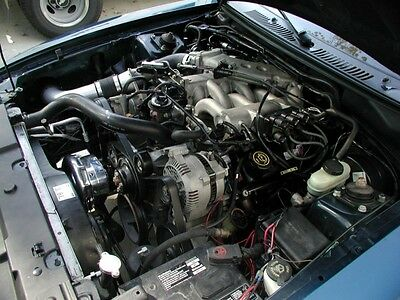 Mustang V6 3.8L Procharger P-1SC Supercharger Stage II Intercooled System 99-03