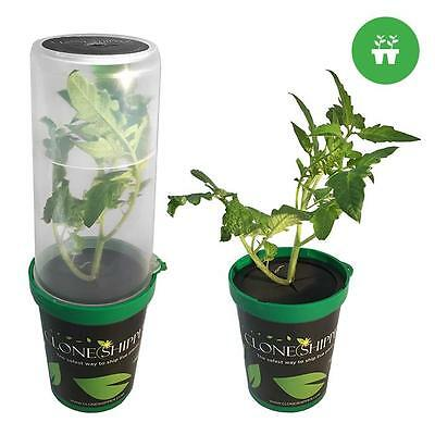 LED Clone Shipper Classic - Plant Shipping Container