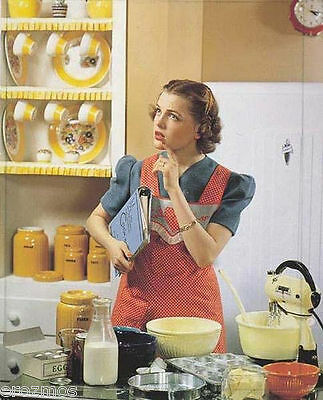 1950's How To Be  Good Housewife & Tranquilizer DVD