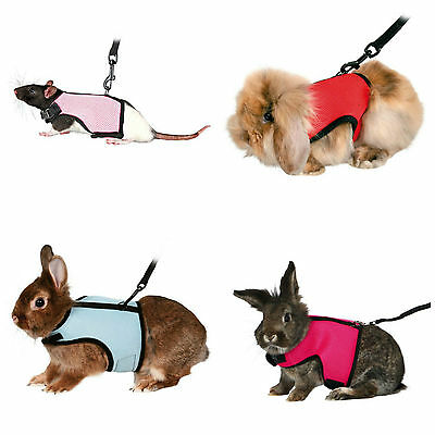 1 x Trixie Rat Ferret Guinea Pig Dwarf Large Rabbit Harness 61512 Multi
