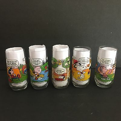 Vintage Complete Set Of 5 Camp Snoopy Collection McDonalds Glasses -Mint-