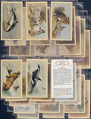 Players Grandee-Full Set- British Mammals (Group Plc) - Exc+++