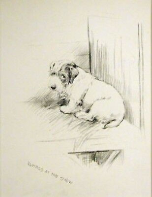 K.F.BARKER 1937  SEALYHAM TERRIER VINTAGE Art ADORABLE Rumpus at The Show