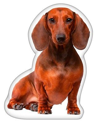 LiLiPi Dachshund Brown Accent Shaped Pillow Made in Chicago