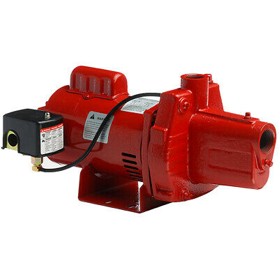 Red Lion 12 GPM 1/2 HP Cast Iron Shallow Well Jet Pump