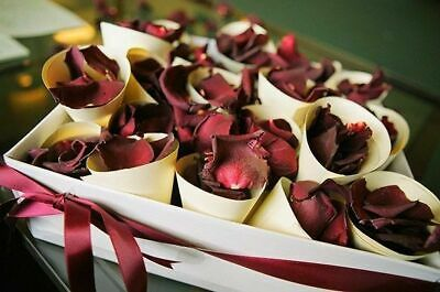 100 Wedding Petals Rose Petal Confetti Table Party Bride Red White Decorations