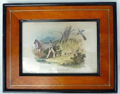 Stahlstich Wild Pacock Shooting Nach M.a. Pittman /j.r. Scott London 1830