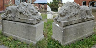 Pair of Laying Lions on Bases - Hand Carved Solid Stone  High 121cm x Long 152cm