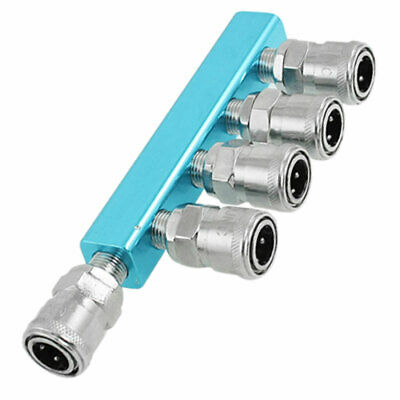 Pneumatic Air Hose Fittings 5 Way Quick Coupler Connector SM20