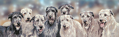 "IRISH WOLFHOUND DOG ART LIMITED EDITION PRINT ""Out for the Craic"" by Paul Doyle"