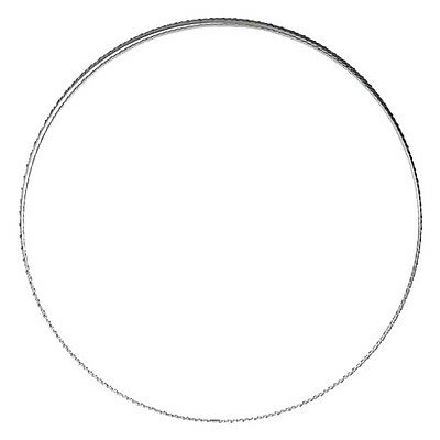 Delta 72 1/2 IN. X 1/4 IN. X 6 TPI Band Saw Blade 28-227 New