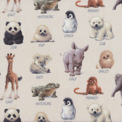 Baby Animals With Names on Cream Wildlife Quilt Fabric FQ or Metre *New