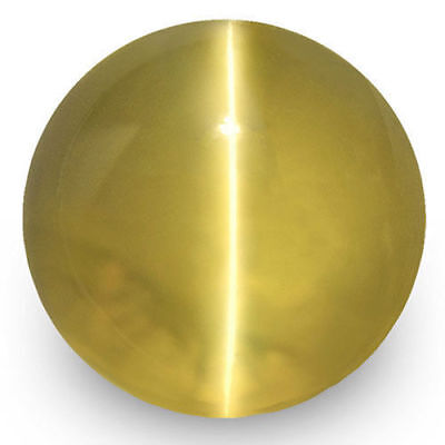 1.95-Carat 6mm Round Intense Golden Yellow Chrysoberyl Cat's Eye from Sri Lanka
