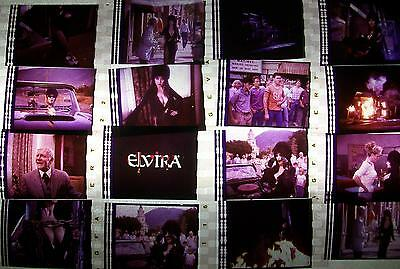 ELVIRA Lot of 12 Film Cells Collection compliments movie dvd poster