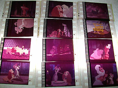LADY AND THE TRAMP Film Cell Lot of 12 - collectible compliments dvd poster