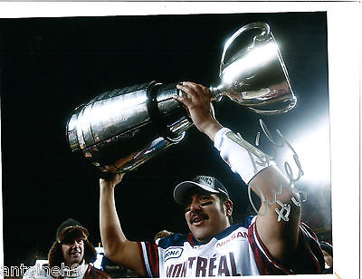 ANTHONY CALVILLO signed 8x10 photo MONTREAL ALOUETTES GREY CUP 2 exact PROOF