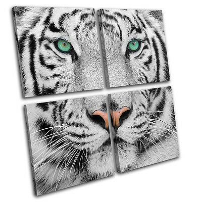 Siberian Tiger Eye Animals MULTI CANVAS WALL ART Picture Print VA